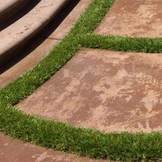garden design cement custom landscape architect