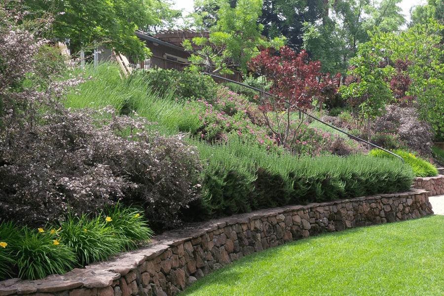 Landscape Architect Or Designer