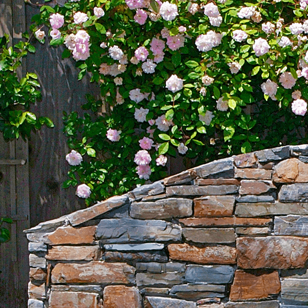 arched curved stone wall cap