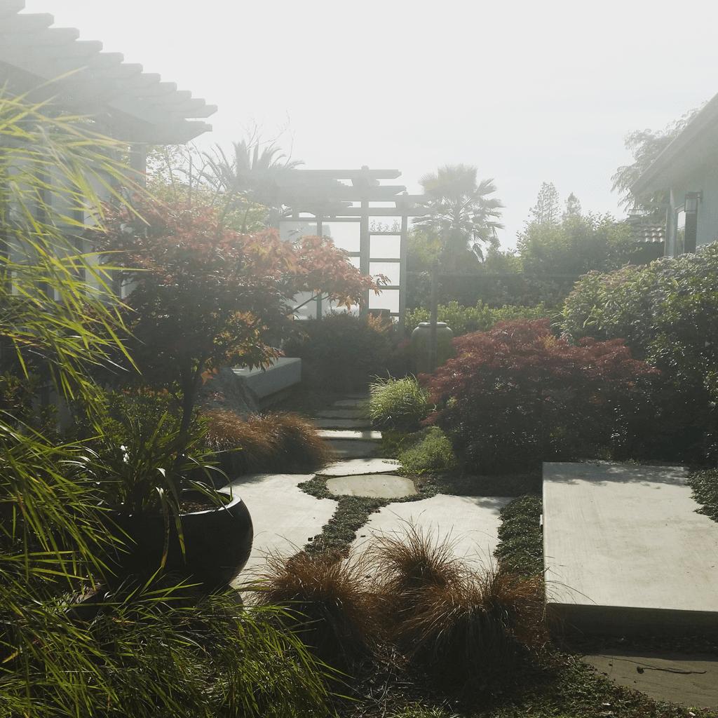 landscape design architecture garden Japanese garden