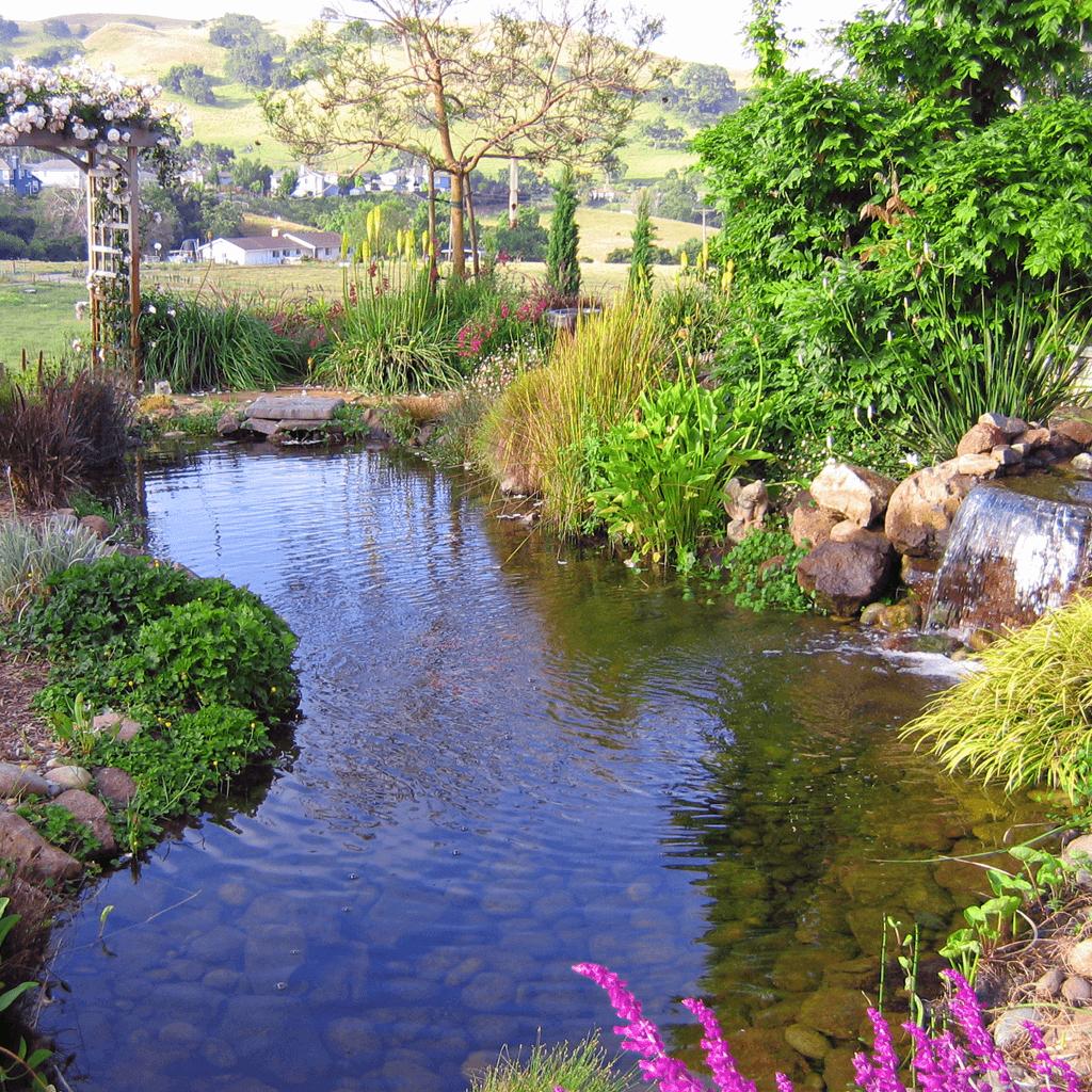 landscape design architecture magical garden fairytale