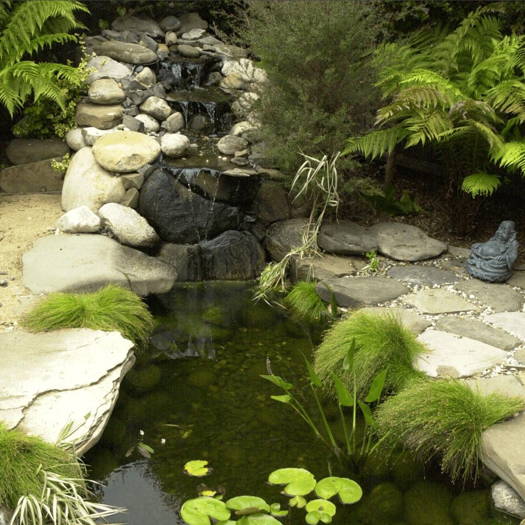landscape design architecture zen garden lily ponds
