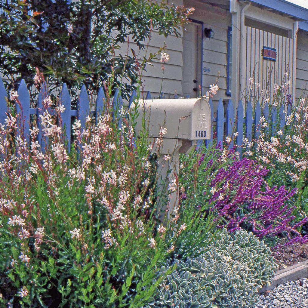 landscape flower garden design beach cottage